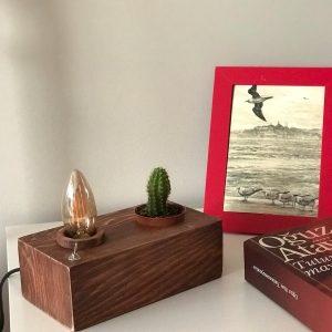 Sukulent yuvalı Fındık rustik masa lambası