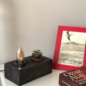 Sukulent yuvalı Siyah rustik masa lambası